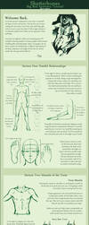 Anatomy Part 2: Proportions by ibbitmonster