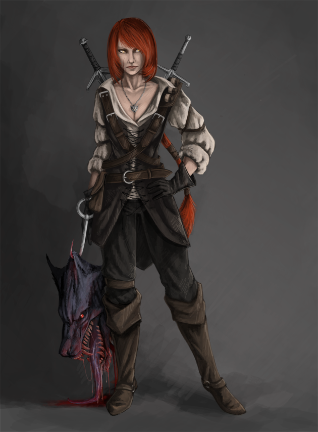 witcher_by_woari-d39gsp3.png