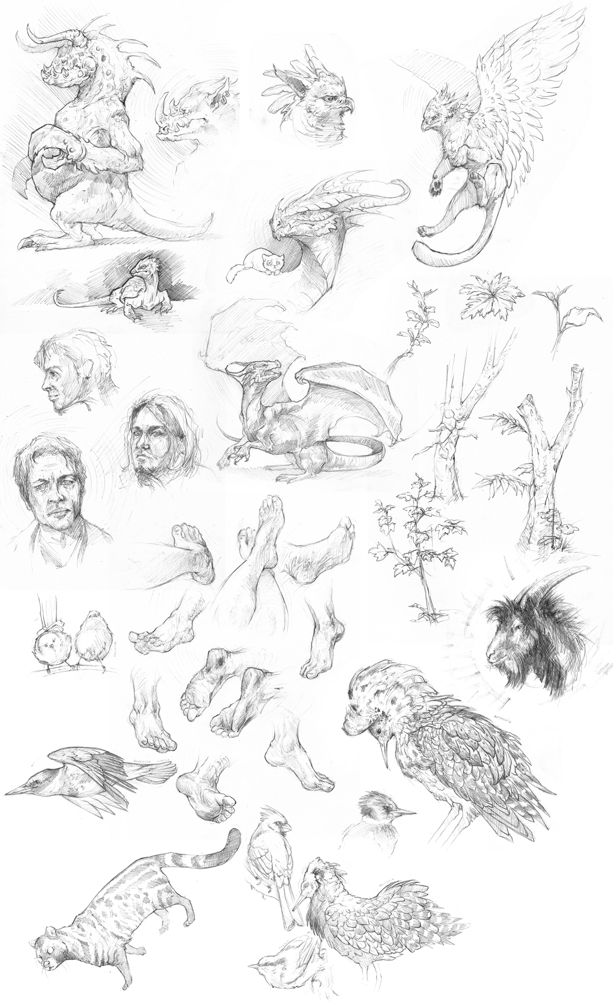 Sketches by Woari