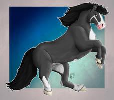Darky Horse