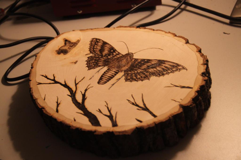 Pyrography butterfly  by trashdoves