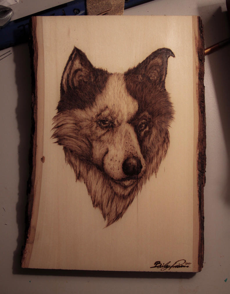 Puppy pyrography  by trashdoves