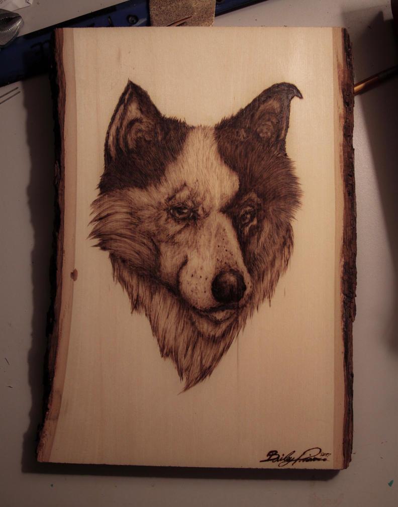 Doge  by trashdoves