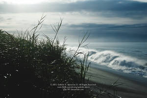 Ocean Mist by gab-181