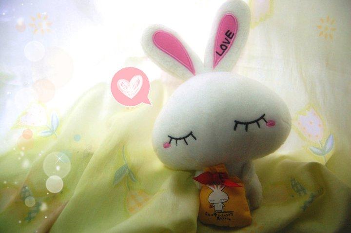 Toddlerboy love chan