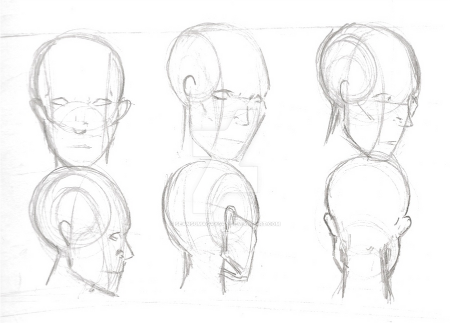 Human Anatomy Head Study 3 By Seansumagaysay On Deviantart