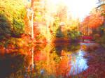 Colourful Stream