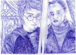 Harry and Hermione Drawing