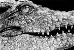 Romantic crocodile