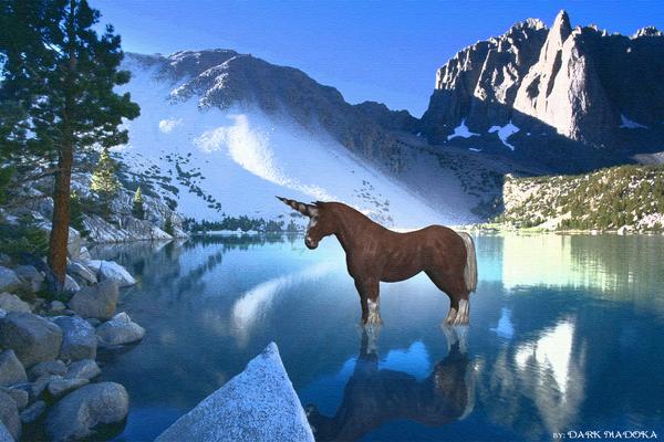 horse wallpaper. horn horse lake HD wallpaper