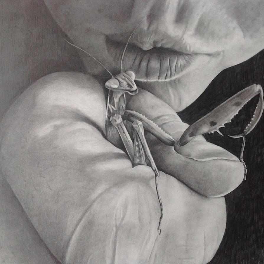 Mantis by McGrinchy