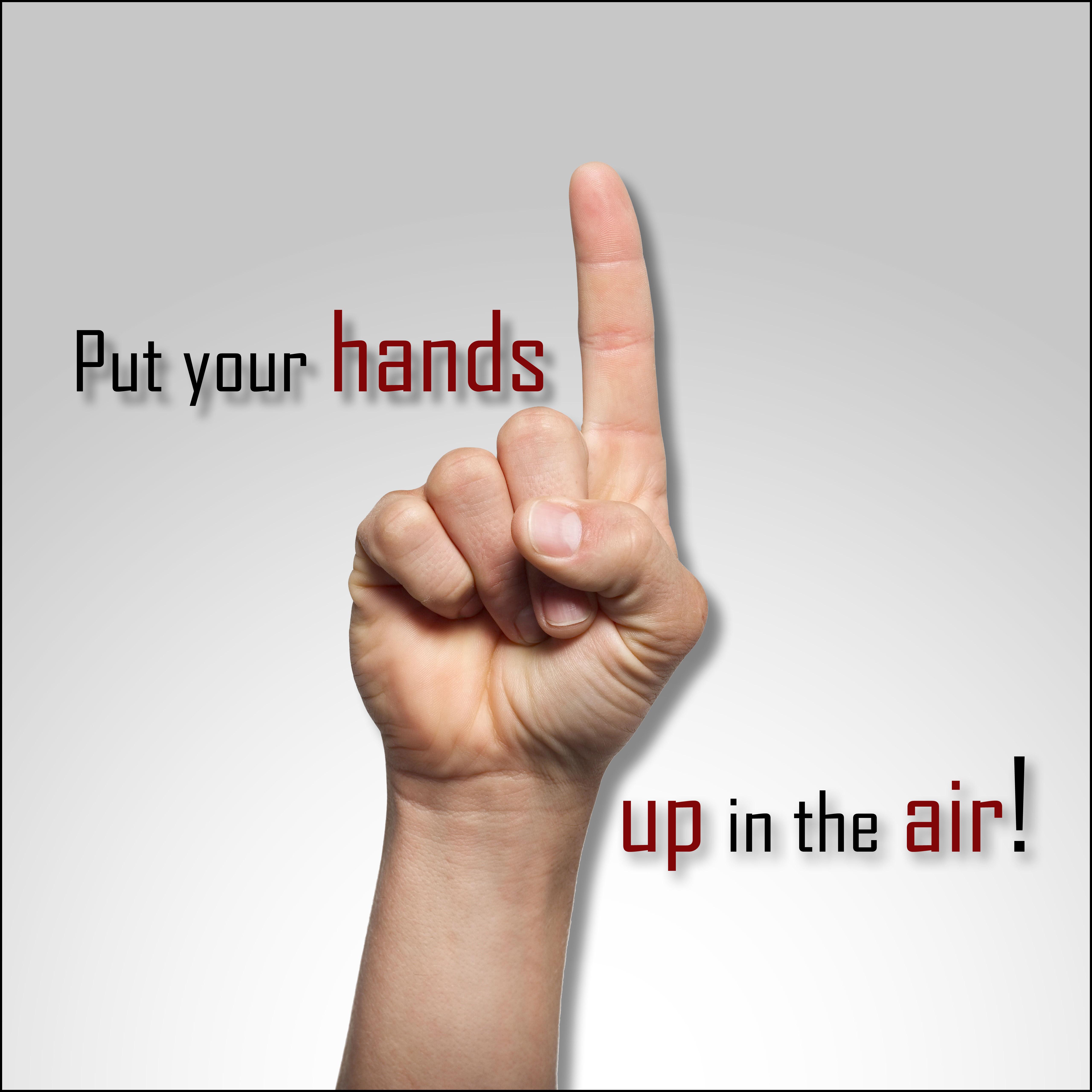 Songtext von Danzel - Put Your Hands Up in the Air! Lyrics
