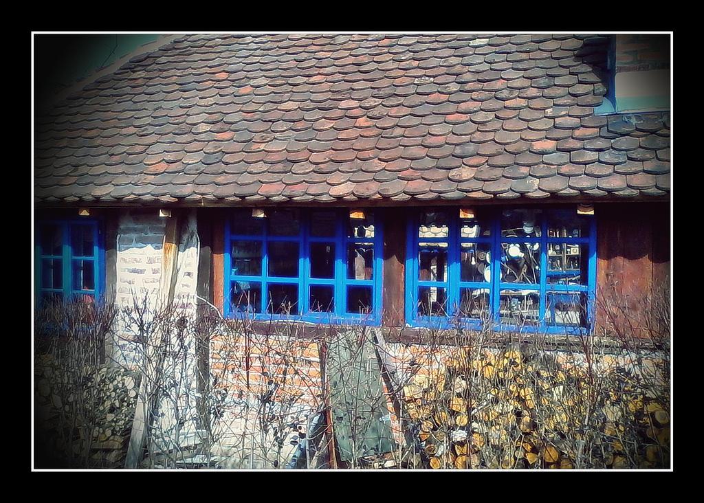 Etno selo VI by VesnaRa14