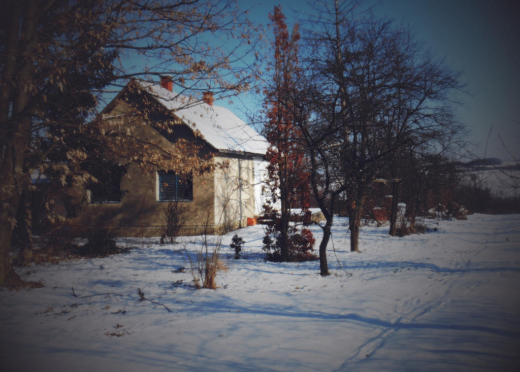 Old house waiting ... by VesnaRa-14