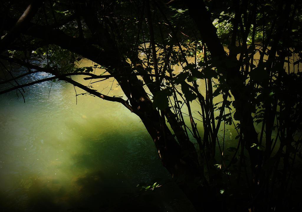 Sunny day - River Gradac IX by VesnaRa-14