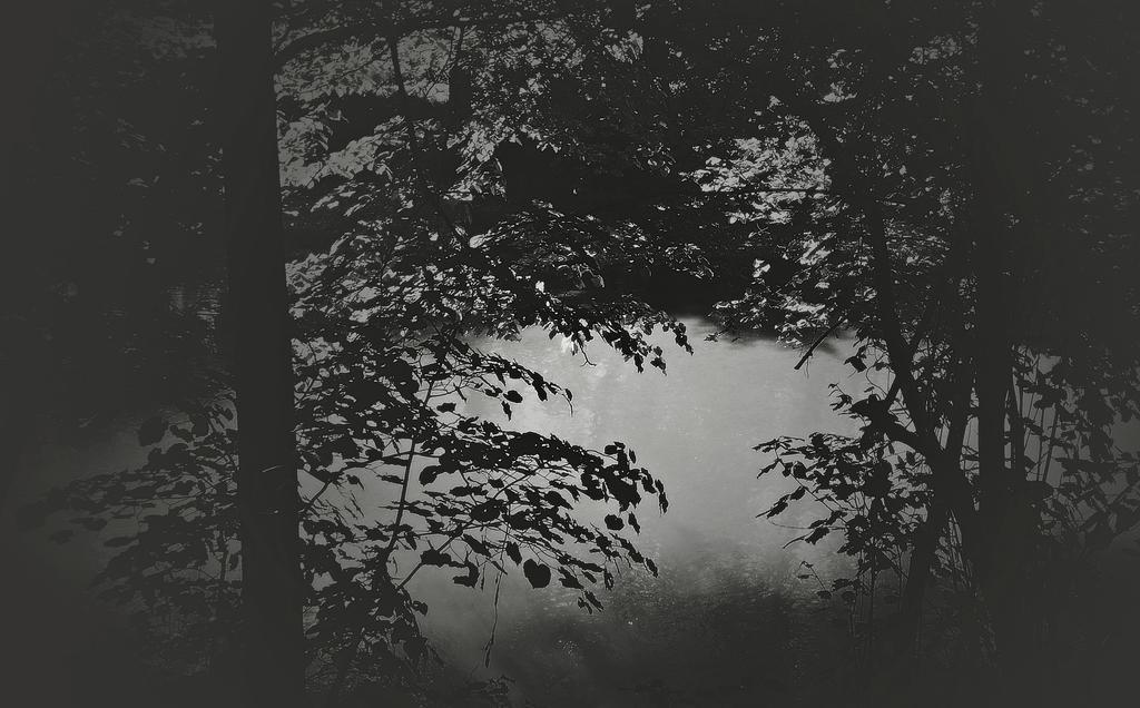 River Gradac VA by VesnaRa-14
