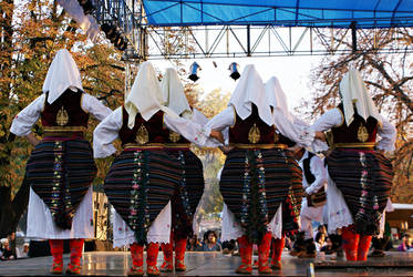 Festival in my city... by VesnaRa014