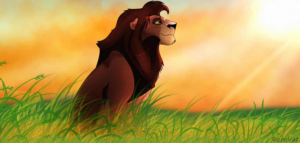 king kovu by coolrat