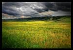Field of Dreams by lucias-tears