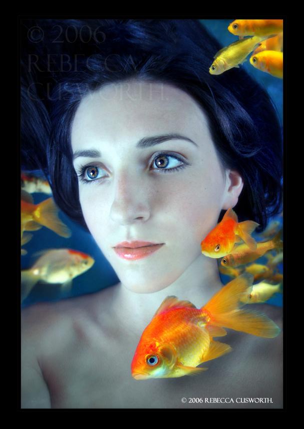 http://fc06.deviantart.com/fs15/f/2007/043/c/9/Gold_Fish_Bowl_by_lucias_tears.jpg
