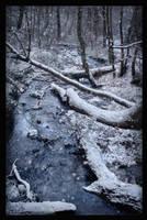 Winter in Rivendell by lucias-tears