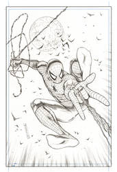 Spiderman Commission by FlowComa