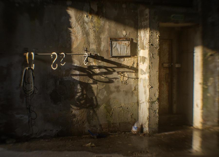 shadow play 1/3 by birdesigns