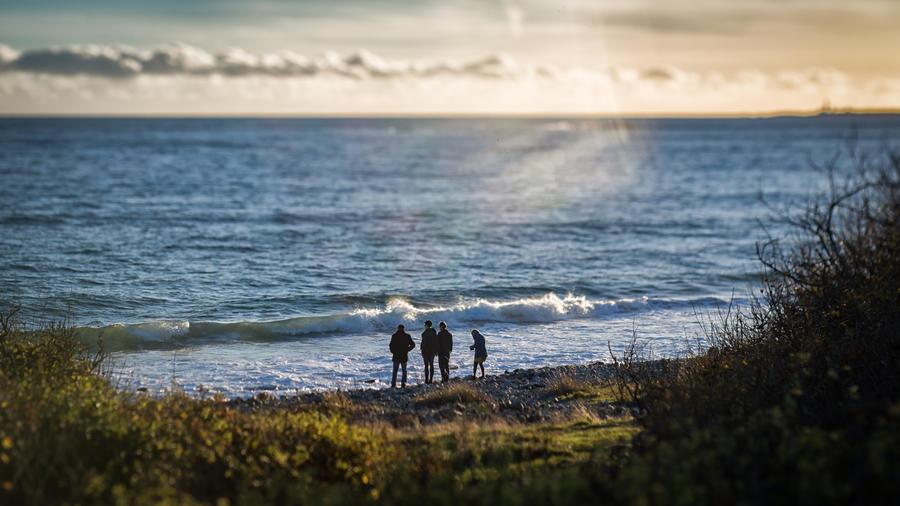 The sea, the sun, the fall by birdesigns