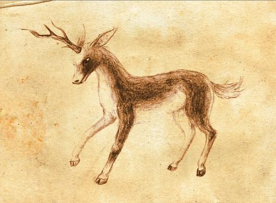 single horned deer Viersen