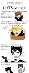 My CATS Meme by Kabuki-Sohma