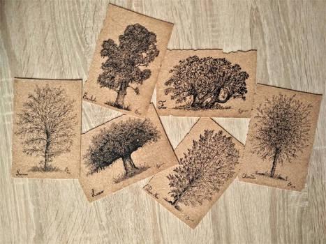 Trees Series