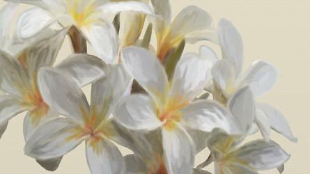 Plumeria Painting