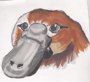 GabyThePlatypus's Profile Picture