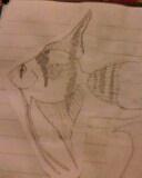 angle fish by mor4674j