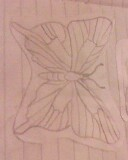 butterfly by mor4674j