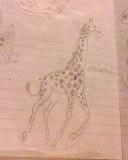 giraffe by mor4674j