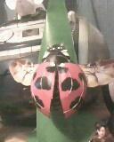 ladybird by mor4674j