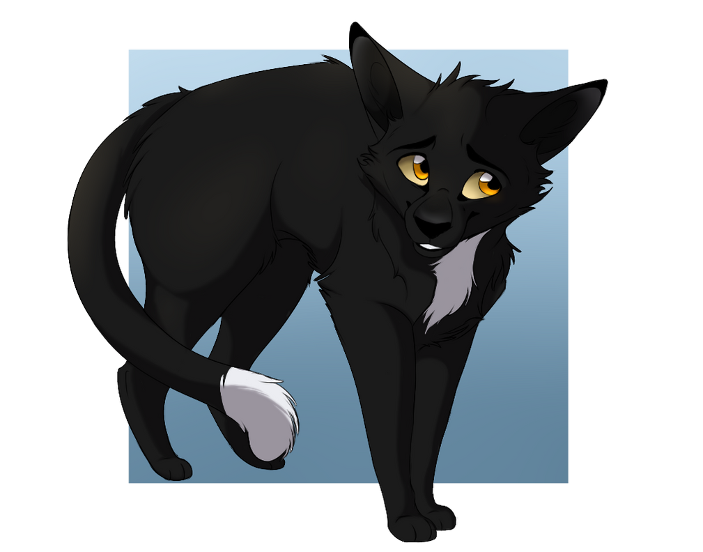 Warriors Ravenpaw By Nightflash X