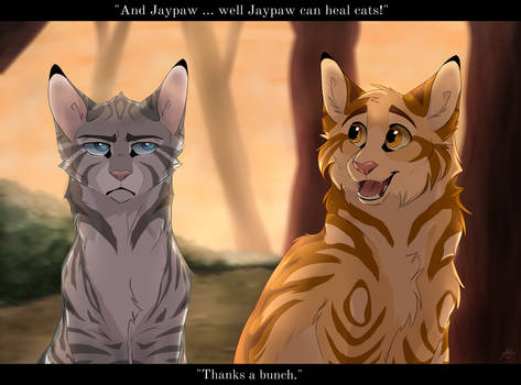 Jaypaw is not amused