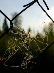 Web by channet