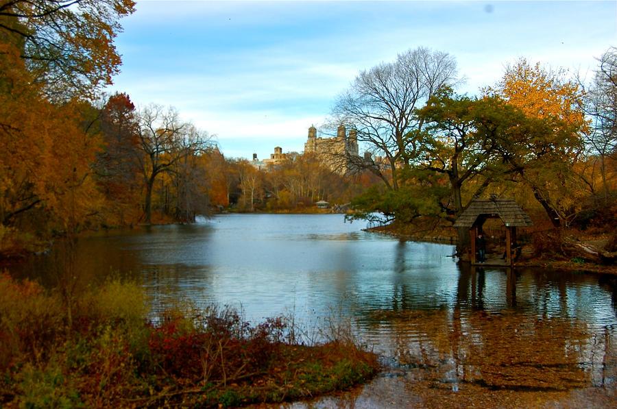 Central park by MJmassacre
