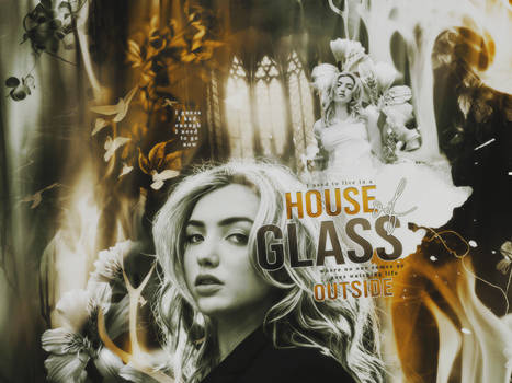 House of Glass   Blend