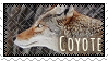 Stamp: Coyote by WrendingRae