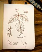 Inktober 1: Poison Ivy