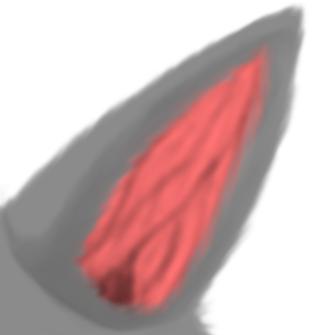Ear by LittleBluDragon