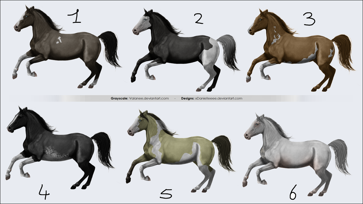 Spotted horse adopts - open by xDanielleeee