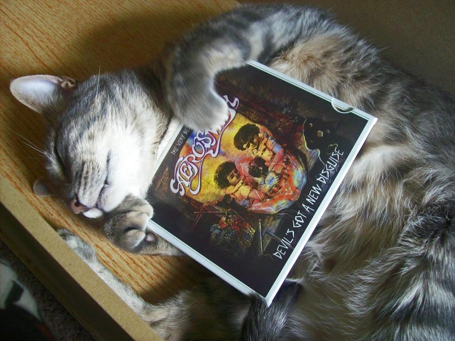 Image Result For Aerosmith Dream On