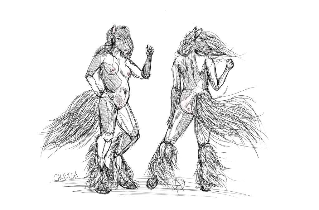 Gypsy Vanner Sketch by AlyOh