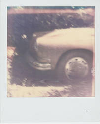 Polaroid Project - Day One by Kaatman