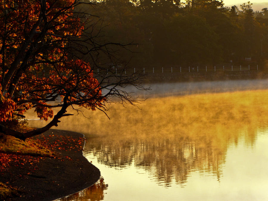 A Misty Morning by Kaatman